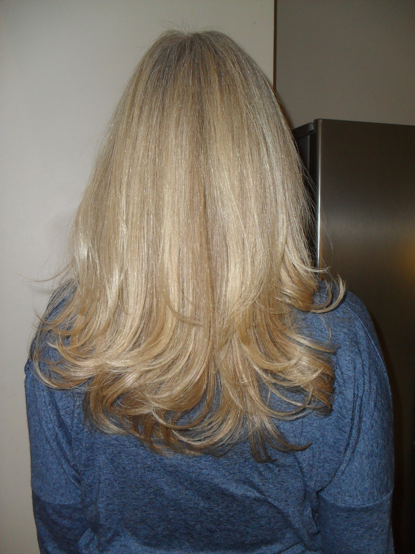 Highlights, cut & styling